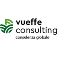 Vueffe Consulting