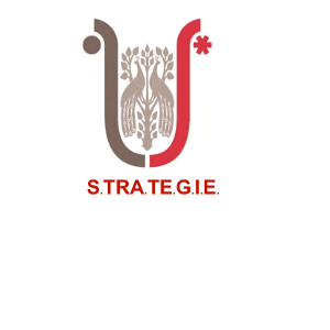 Strategie Srl