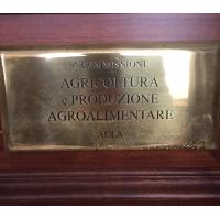 AUDIZIONE IN COMMISSIONE AGRICOLTURA DEL SENATO