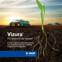 BASF Vizura