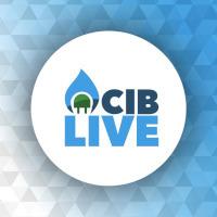 CIB LIVE: LE DIRETTE FACEBOOK TARGATE CIB