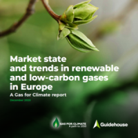 NUOVO REPORT GAS FOR CLIMATE
