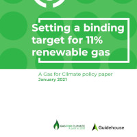 GAS FOR CLIMATE – NUOVO POLICY PAPER