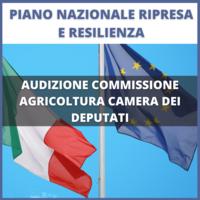 Audizione In Commissione Agricoltura Camera Dei Deputati